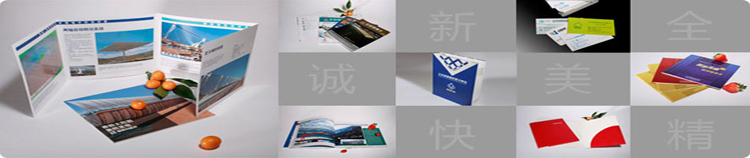 供应画册 画册印刷 彩页设计印刷 进口油墨印刷50本起印刷