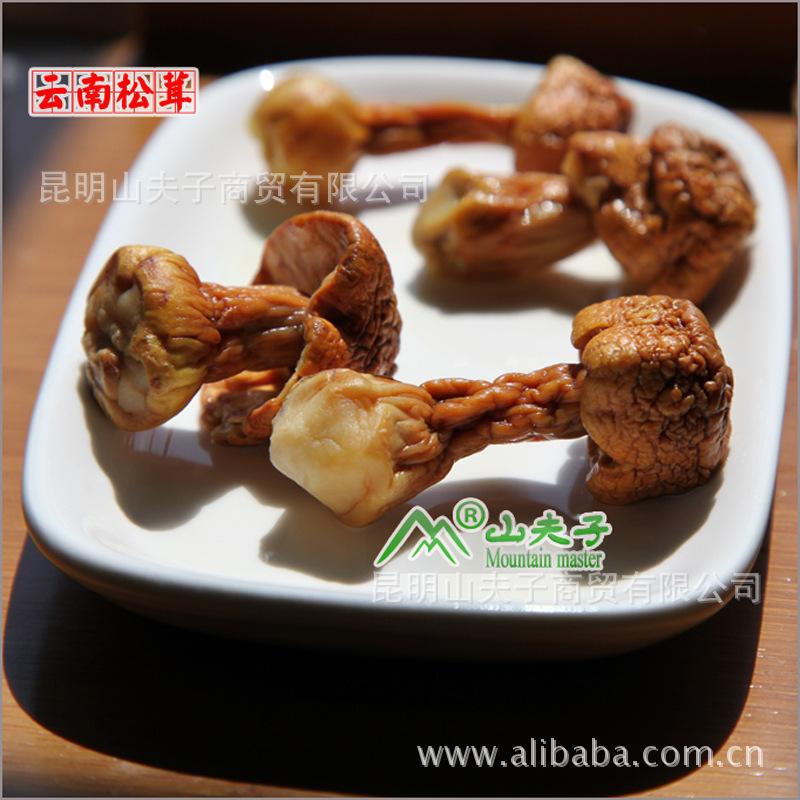 【云南高原松茸野生菌】特级松茸菌|松茸|野生食用菌【产地批发】