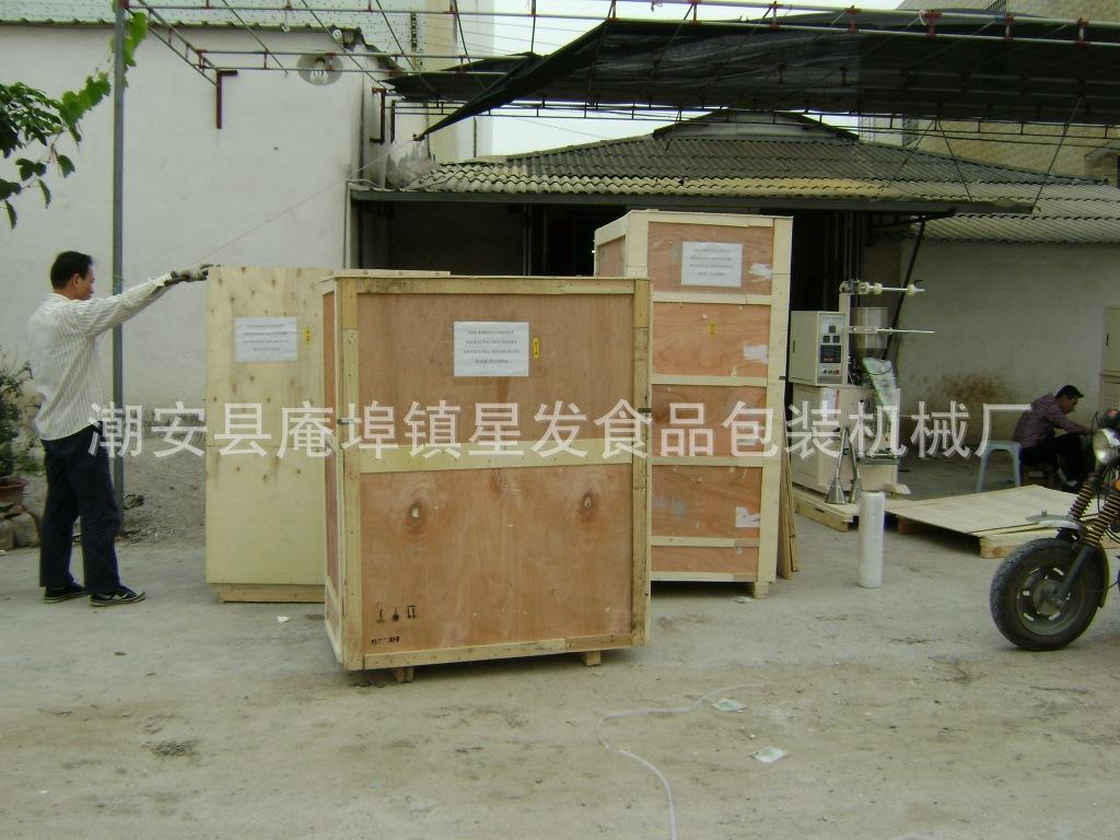XF320淄博 枣庄 东营X-029肉丸包装机 鸡精包装机 小饼干包