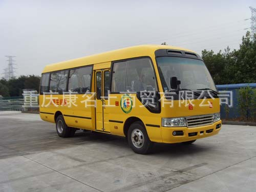 浙江NPS6700CX小学生校车CY4102东风朝阳发动机