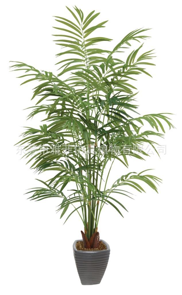 竹葵绿化装饰盆栽盆景室内室外美化摆设人造树 景观工程项目