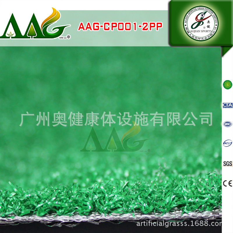AAG-CP001-2PP (1)