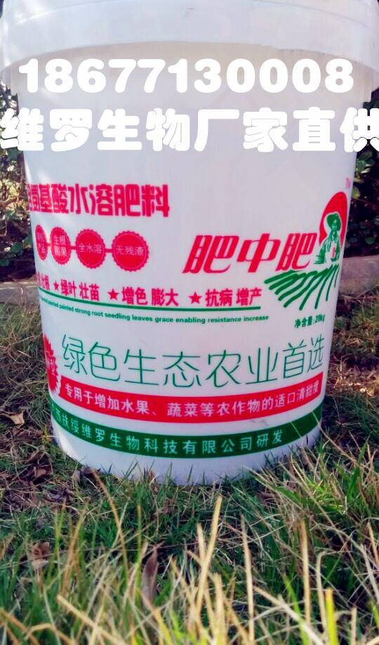 有机肥厂家专业生产 氨基酸水溶肥