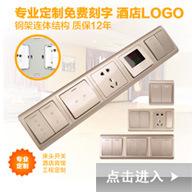 正鑫墙壁开关厂家 正吕电气大品牌终身保用 SIMSEINS明装两位五孔