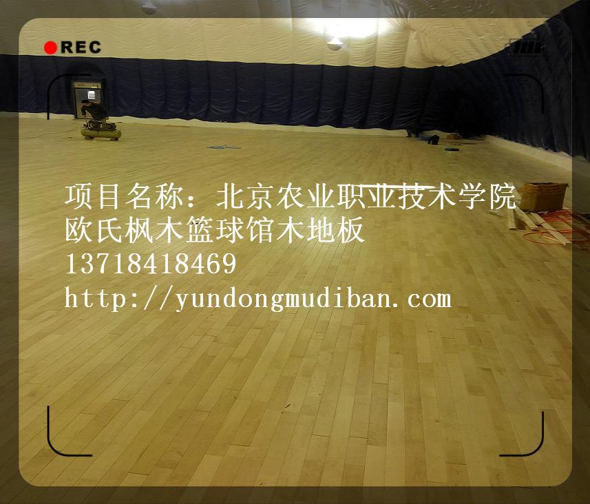 北京农业职业技术学院 (2)_副本
