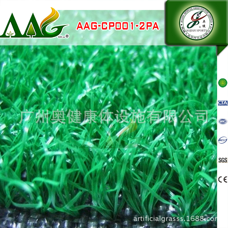AAG-CP001-2PA (20)