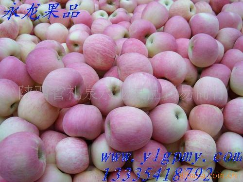 供应水晶红富士苹果(图)